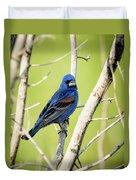 Blue Grosbeak Duvet Cover