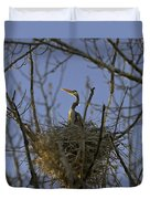 Blue Heron 30 Duvet Cover by Roger Snyder