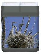 Blue Heron 36 Duvet Cover by Roger Snyder