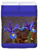 Blue Iris Germanica Duvet Cover