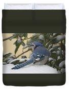 Blue Jay Beauty Duvet Cover