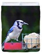 Blue Jay - Cyanocitta Cristata  Duvet Cover