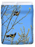 Blue Jay Mobbing A Crow Duvet Cover
