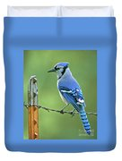 Blue Jay On The Fence Duvet Cover