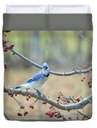 Blue Jay Poses In Crab Apple Tree Duvet Cover