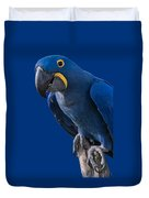 Blue Macaw Duvet Cover