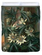 Blue Passion Flower For The  Temple Of Flora By Robert Thornton Duvet Cover