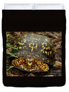 Blue Ridge Box Turtle Duvet Cover