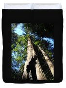 Blue Sky Big Redwood Trees Forest Art Prints Baslee Troutman Duvet Cover