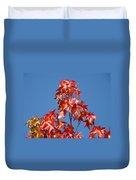 Blue Sky Fall Tree Leaves Landscape Art Prints Baslee Troutman Duvet Cover