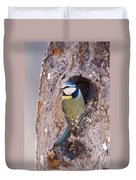 Blue Tit Leaving Nest Duvet Cover by Cliff Norton