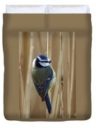 Blue Tit On Reed Duvet Cover