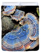 Blue Turkeytail Fungi Duvet Cover