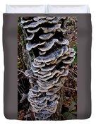 Blue Turkeytail Tree Duvet Cover