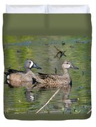 Male And Female Blue-winged Teal  Duvet Cover