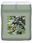 Blueberry Bounty Duvet Cover