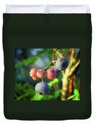 Blueberry Morning Duvet Cover
