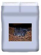 Bluebird Babies Dreaming Of Flight Duvet Cover