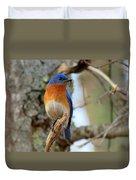 Bluebird Dad Duvet Cover