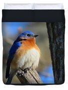 Bluebird Evening Duvet Cover