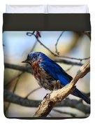 Bluebird In May Duvet Cover