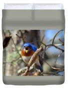 Bluebird Temper Duvet Cover
