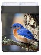 Bluebird Vibrance Duvet Cover