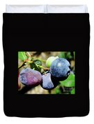 Blues In The Florida Berries Duvet Cover