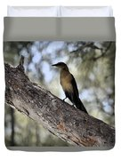 Boat - Tailed Grackle  Duvet Cover