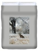 Bobcat And Heavy Frost Duvet Cover