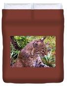 Bobcat Duvet Cover