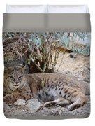 Bobcat Resting Duvet Cover