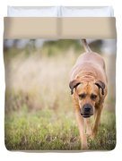 Boerboel Dog Duvet Cover