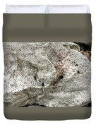 Bonaire Coral And Shells 1 Duvet Cover