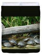 Bonding Box Turtles Duvet Cover