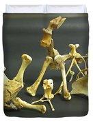 Bone Creatures One Duvet Cover