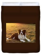 Border Collie At Sunset With Warm Colors Duvet Cover