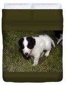 Border Collie Puppy Duvet Cover