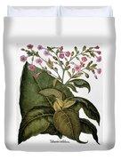 Botany: Tobacco Plant Duvet Cover
