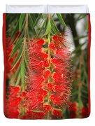 Bottlebrush Tree Duvet Cover