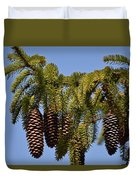 Boughs Of Pine Cones Duvet Cover