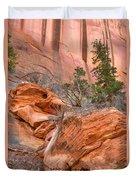 Boulder-notom Road Varnish Duvet Cover