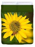 Box Elder Bug On False Sunflower Duvet Cover