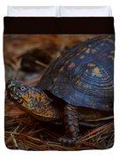 Box Turtle 2 Duvet Cover