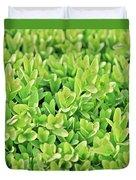Boxwood Leaves Duvet Cover