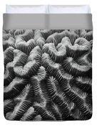 Brain Coral Details Duvet Cover