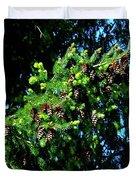 Branch Of Cones Duvet Cover