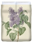 Branch With Purple Lilacs, Maria Geertruyd Barbiers-snabilie, 1786 - 1838 Duvet Cover