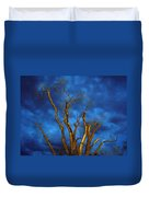Branches Against Night Sky H Duvet Cover
