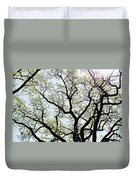 Branches Against Sky In Spring Outback Duvet Cover